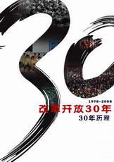 改革开放30年